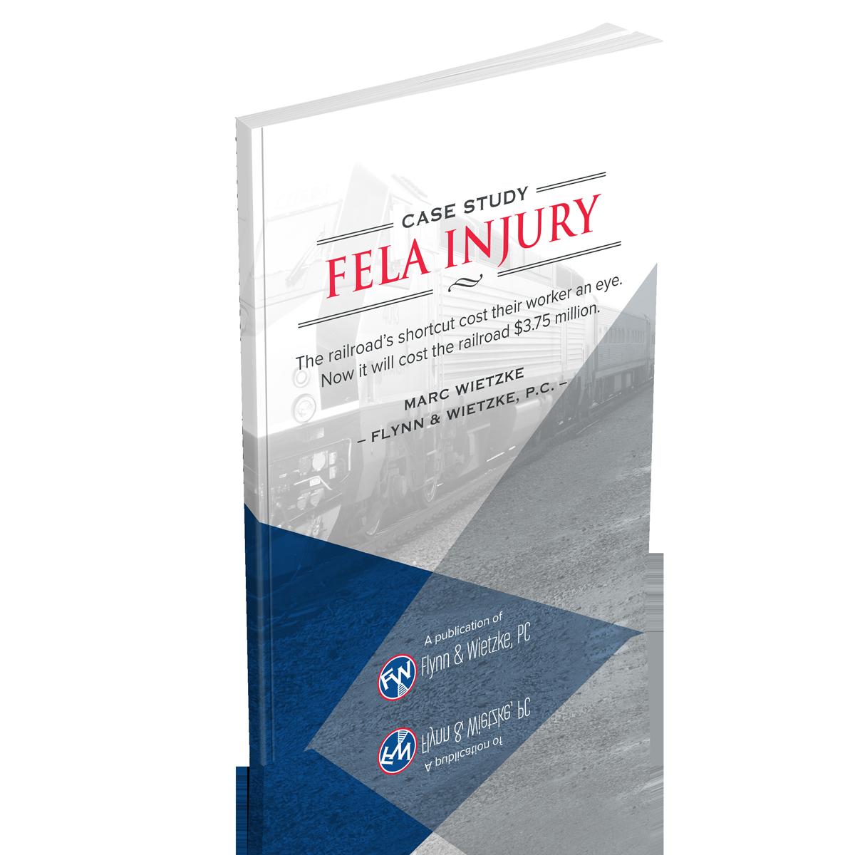 FELA_Injury_Case_Study_Mockup_v2.png